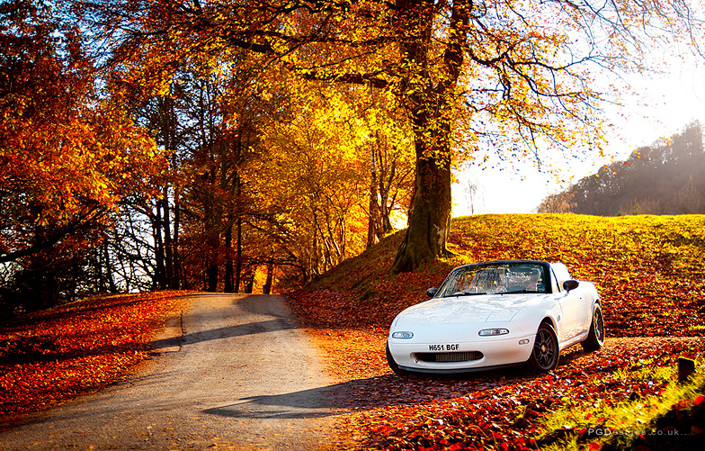 Automotive-mx5-mk1-autumn-driver